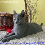 Ria Blue Fortune,CZ na portrétovém focení 15.10.2021